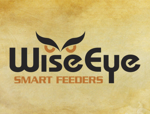 WiseEye Feeders