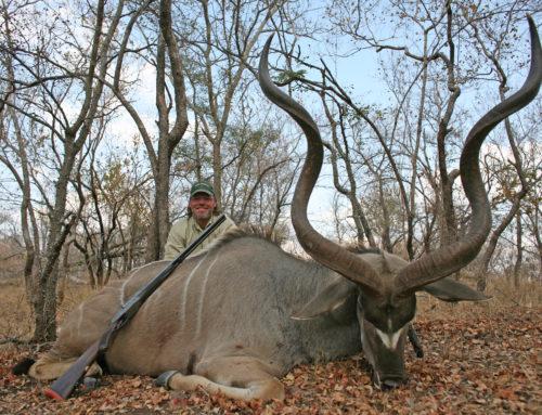 First Kudu